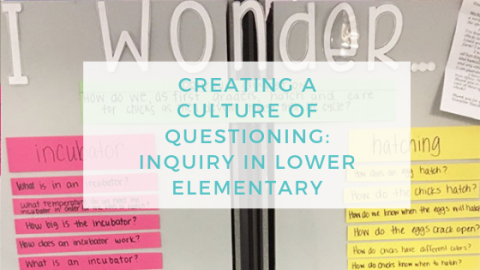 A Culture of Questioning in Lower Elementary